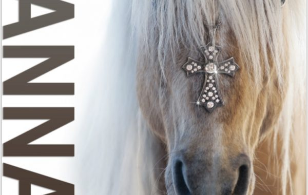 Hannah Fine Jewelry – Cross My Horse